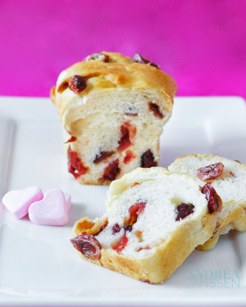 cranberry buns with two slices of bread