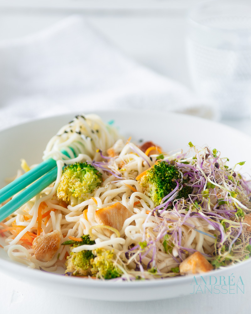 Plate with Stir fry chicken with veggies and noodles