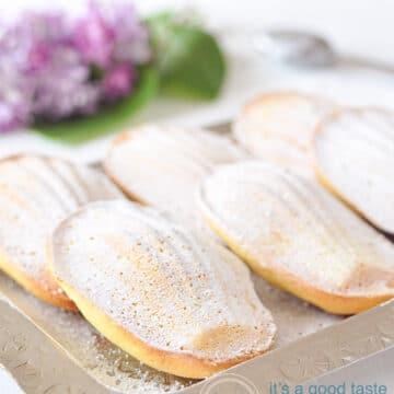 6 orange madeleines on a plate