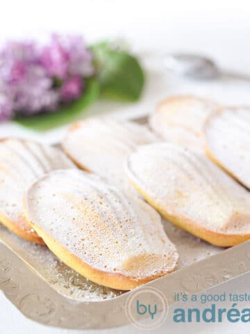 6 orange madeleines on a plate
