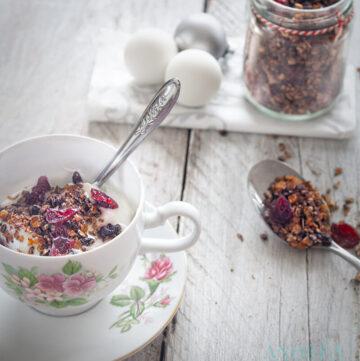 muesli met speculaaskruiden en cranberries - gingerbread granola with cranberries