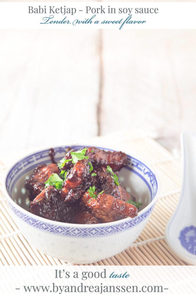 babi ketjap - Pork in soy sauce