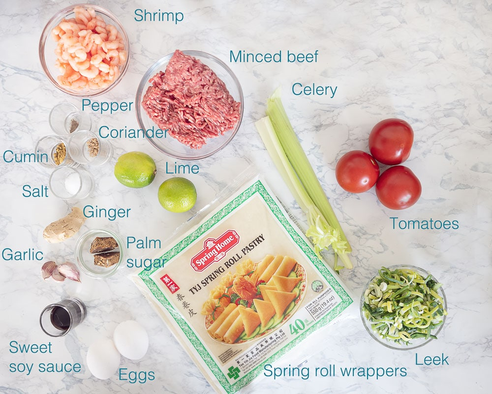 Ingredients mini spring rolls with beef and shrimp